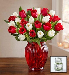 Holiday Tulips + Free Candle