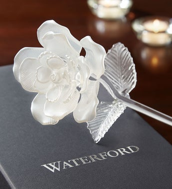 Waterford White Pearl Rose For Sympathy