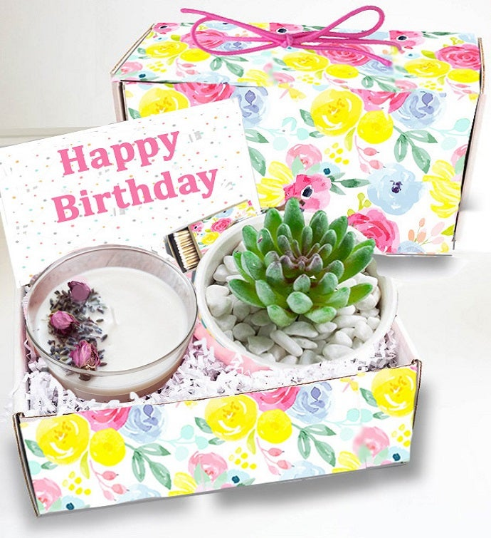 Birthday Succulent Gift Box