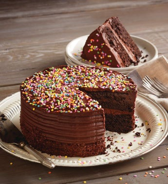 Chocolate Birthday Cake SnipeImage